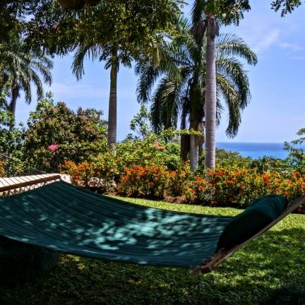 Avalon-hammock