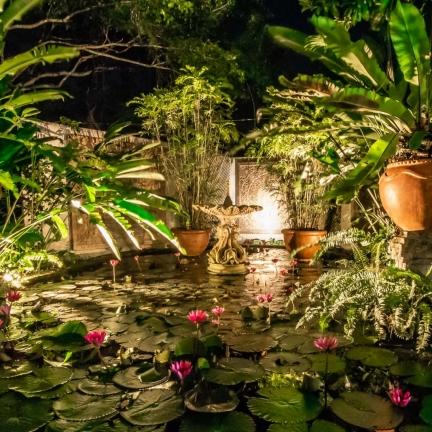 Bali-Hail-Lotus-Pool-by-night