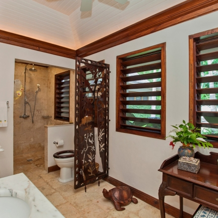 Point-of-View-bathroom-2